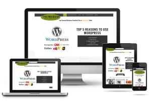 We Recommends Responsive Web Design